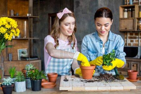 women planting flower