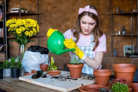 Photo pour Jeune femme en caoutchouc gants arrosage plante en pot de fleurs - image libre de droit