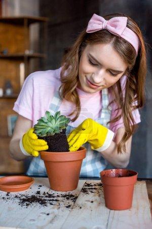 Photo pour Belle jeune femme en gants en caoutchouc mettant la plante verte dans le pot de fleurs - image libre de droit