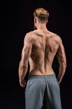 Photo for Back view of shirtless bearded bodybuilder posing isolated on black in studio - Royalty Free Image
