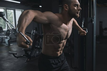 Photo for Concentrated muscular sportsman working out with sport equipment in gym - Royalty Free Image