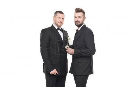 Photo for Homosexual couple of grooms in suits posing and looking at camera isolated on white - Royalty Free Image