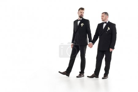 Photo for Couple of grooms in suits holding hands during walk isolated on white - Royalty Free Image