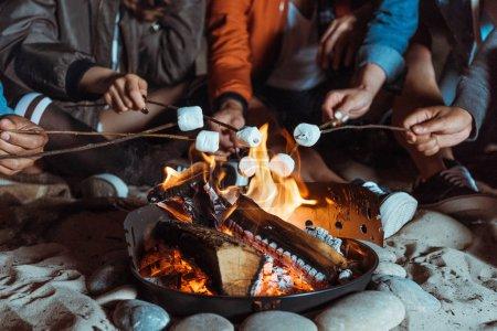 friends roasting marshmallows on bonfire