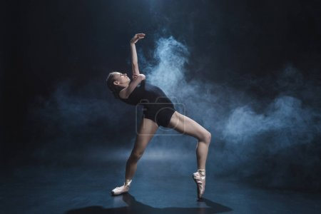ballerina dancing in pointe and leotard