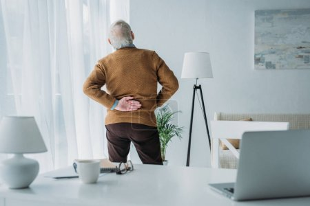 Senior man suffering from back pain during work in office