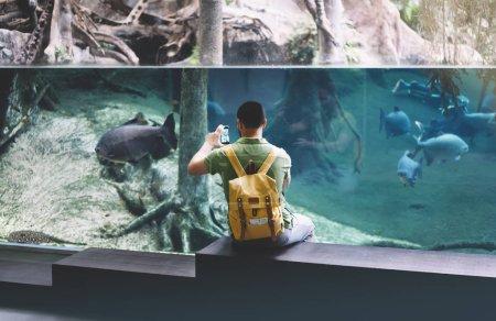 tourist  on background blue sea aquarium