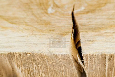 Photo pour Fragment de bois brut scié fissuré - image libre de droit