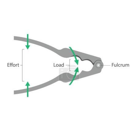 Simple machines: Lever - Nutcracker