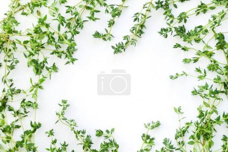 Overhead view of thyme leaves and twigs arranged in frame form with text space on white background
