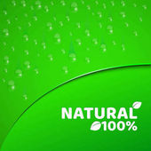 100 percent natural product Green background template for your projects Realistic drops of water Theme of vegetarianism Rounded cut with text Vector illustration