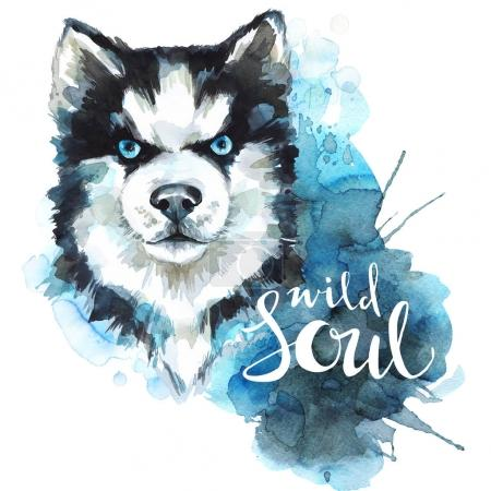 Watercolor Husky with words Wild Soul.