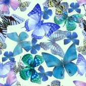 Seamless pattern from butterflies vector illustration clip-art