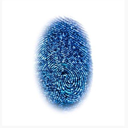 Blue fingerprint identification symbol isolated on white background in technology concept
