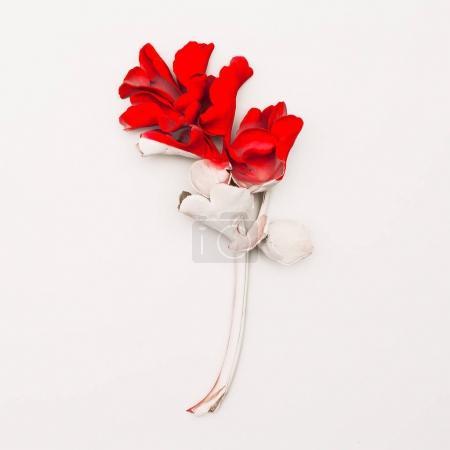 Photo pour Peinture de plantes tropicales. Style de l'art minimal - image libre de droit