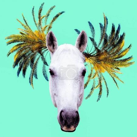 Fashion collage minimal. Photo manipulation. Horse and Palm Hips