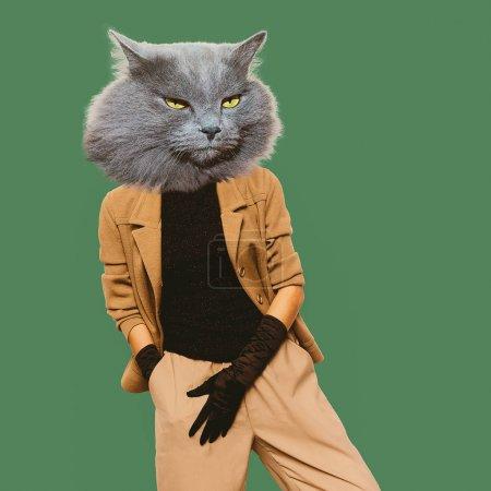 Cat. Vintage clothing. Art collage. Minimal fun