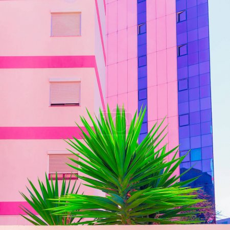 Tropical location. Fashion colorful design. Palms and Urban. Min