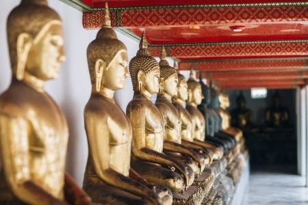 Row of Golden Buddhas  in Thailand