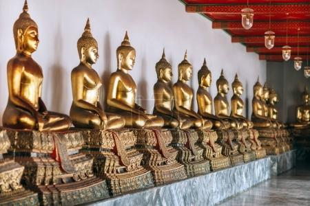Row of Golden Buddhas
