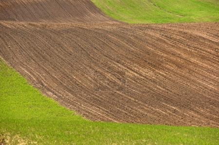 Foto de Farmland, plowed field, spring, landscape, - Imagen libre de derechos