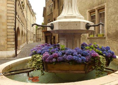 Photo pour Fontaine avec des fleurs sur la rue vieille ville Genève, Zarifian - image libre de droit