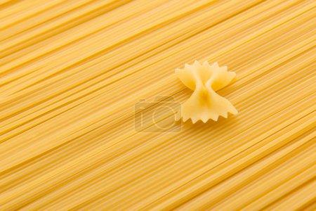 macaroni and vermicelli pasta