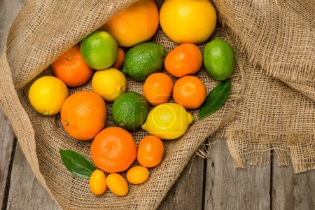 Photo for Top view of various fresh ripe citrus fruits on sackcloth - Royalty Free Image