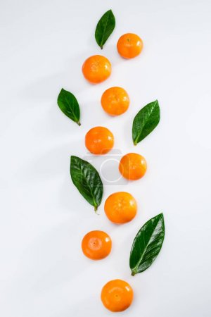 fresh tangerines and leaves