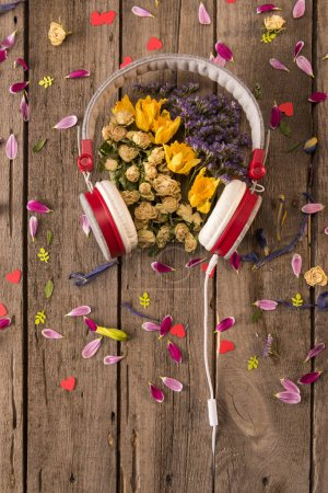 Photo for Top view of headphones and various beautiful flowers and petals on wooden table, Spring floral composition - Royalty Free Image