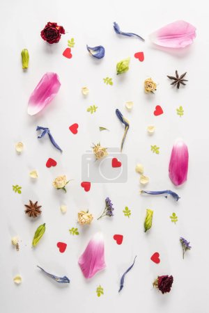 Photo for Top view of springtime composition with various flowers, anise stars and hearts on white - Royalty Free Image