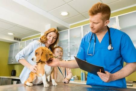 Veterinary examing dog at clinic