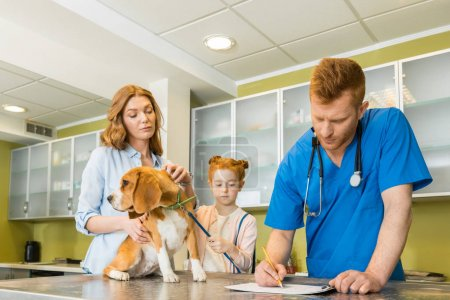 dog at veterinary doctor
