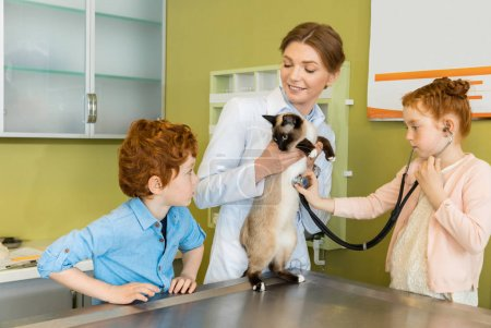 Girl ausculting cat at clinic
