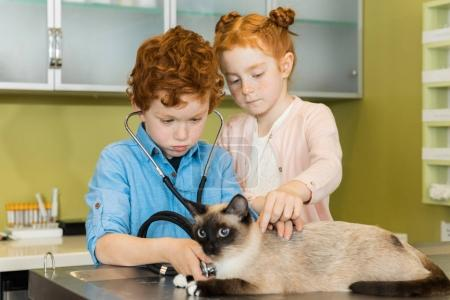 Photo for Cute red haired siblings boy and girl ausculting cat at clinic - Royalty Free Image