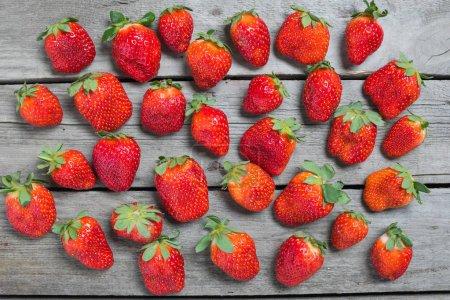 Photo pour Vue du dessus des fraises rouges fraîches sur fond de table en bois, concept de baies sur bois - image libre de droit