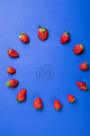 Foto de Vista superior de fresas frescas rojos en círculo aislado en azul, bayas fondo concepto - Imagen libre de derechos