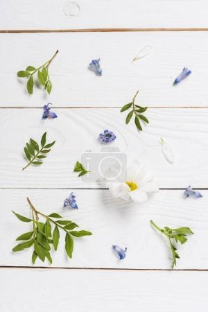 flowers and petals on wooden table