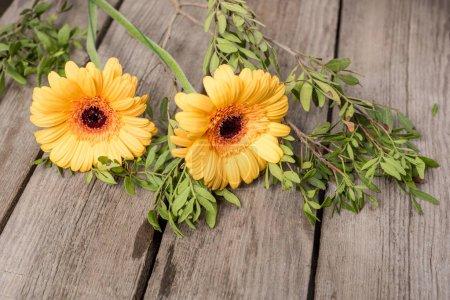 Belles fleurs fleuries