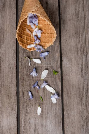 Wafer cone with petals