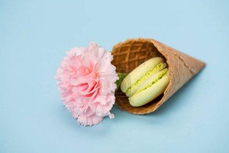 Photo for Pistachio macaron with pink flower in waffle cone on blue surface - Royalty Free Image