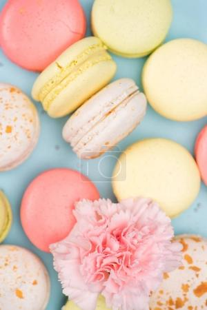Photo for Top view of colorful fresh macarons background with pink flower - Royalty Free Image