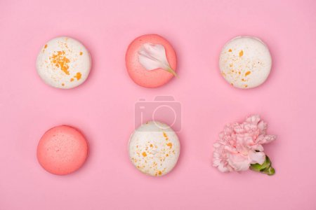 Photo for Top view of fresh macarons and Carnation flower on pink surface. Sweet macarons pattern concept - Royalty Free Image