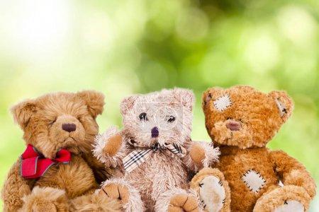 Photo pour Ours en peluche regroupés sur un fond naturel - image libre de droit