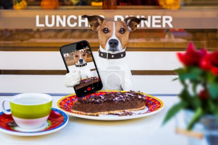 Dog eating cake and tea at resataurant selfie