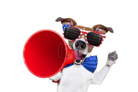 Photo pour Jack Russell chien criant avec un mégaphone 4 juillet le jour de l'indépendance, isolé sur fond blanc - image libre de droit