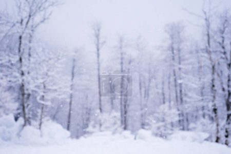 Photo pour Abstrait floue hiver avec les chutes de neige dans la forêt, carte de Noël - image libre de droit