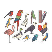 Vector illustration icon set of birds