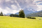 Pasture in the alps of Bavaria