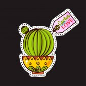 Fashion patches brooches with cacti